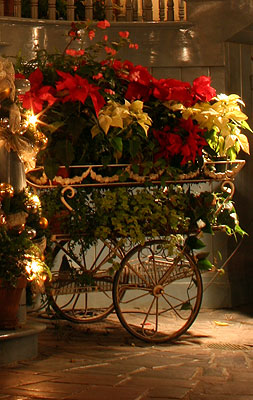poinsettia-wagon
